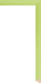 Darien Liner Lime 3/4