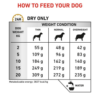 Urinary U/C feeding guide