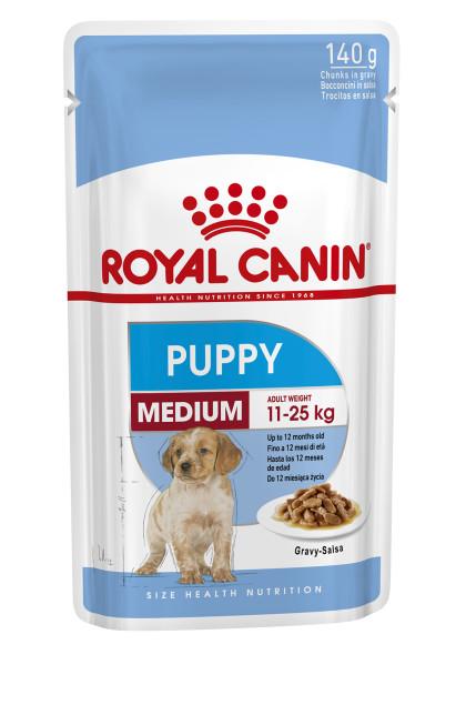 Medium Puppy (in gravy)