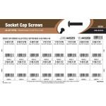 Button-Head Socket Cap Screws Assortment (#0-80 thru #4-40 Thread)