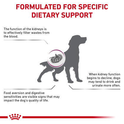 Renal Support A Dry Dog Food (Packaging May Vary)