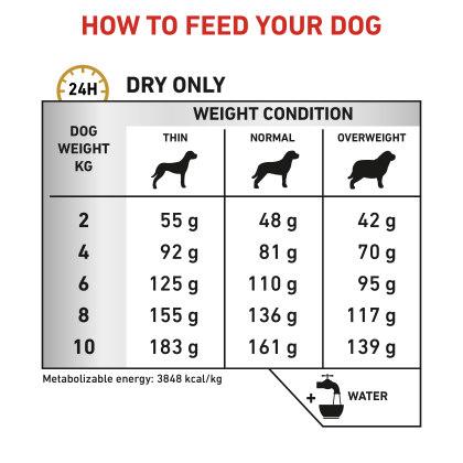 Canine Urinary S/O Small Dog feeding guide