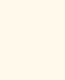 Bainbridge Primer White 32