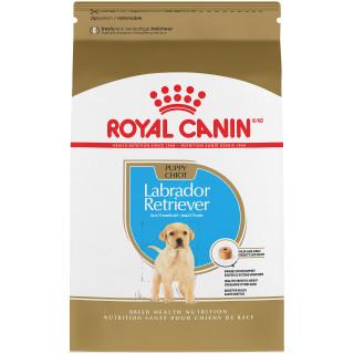 Labrador Retriever Puppy Dry Dog Food