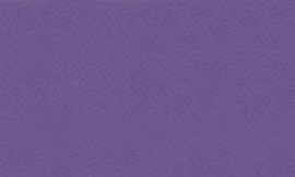 Crescent Purple Iris 32x40