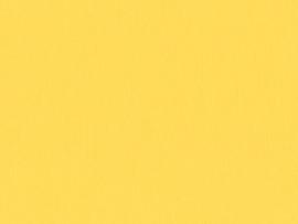 Crescent Naples Yellow 32x40