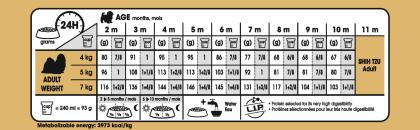 Shih Tzu Puppy feeding guide