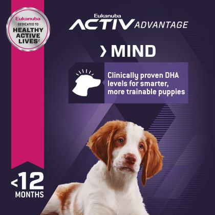 Puppy Medium Breed Dry Dog Food