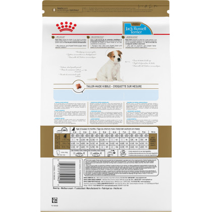 Jack Russell Terrier Puppy Dry Dog Food