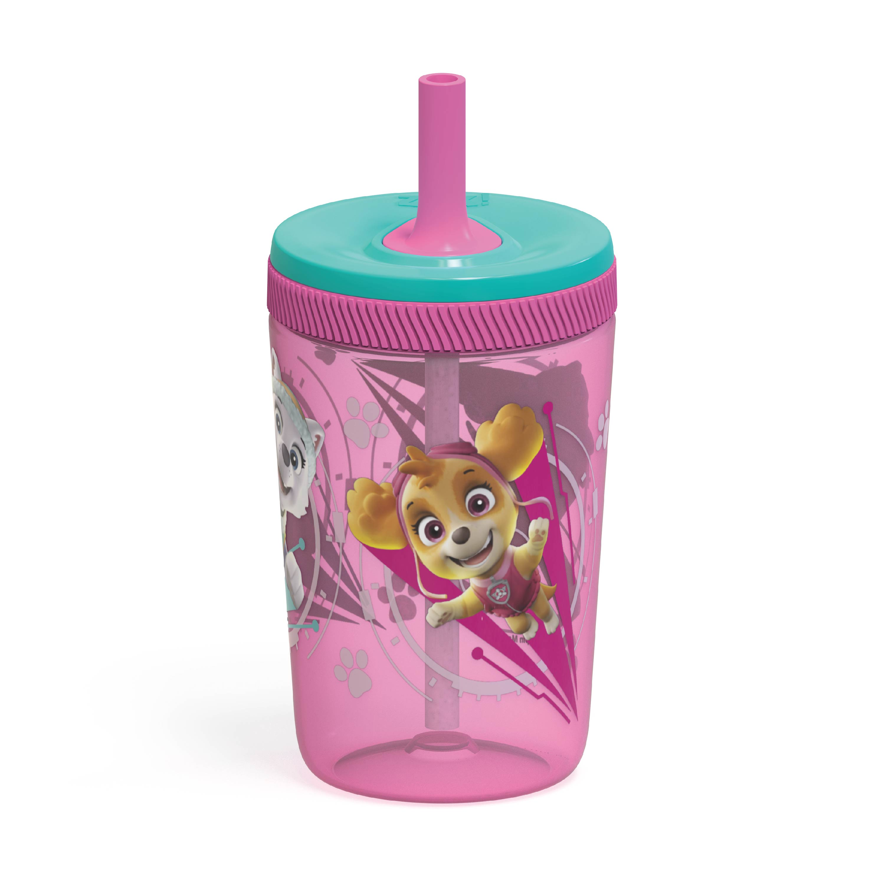 Paw Patrol 15  ounce Plastic Tumbler with Lid and Straw, Marshall and Skye, 2-piece set slideshow image 3