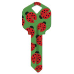 WacKey Ladybug Key Blank