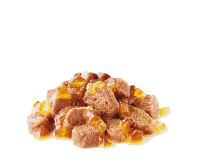 Light Weight Care (in jelly) kibble