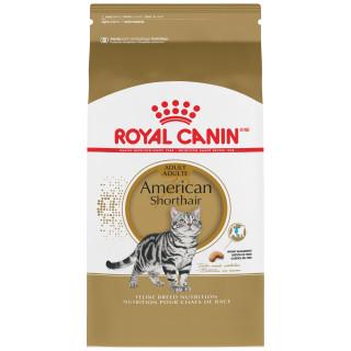 AMERICAN SHORTHAIR Adulte – nourriture sèche pour chats