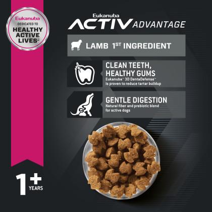 Adult - Lamb 1st Ingredient Dry Dog Food