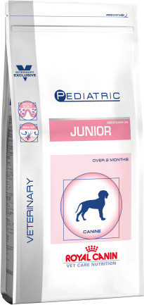 Pediatric junior