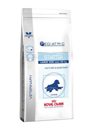 Pediatric Starter Large Dog