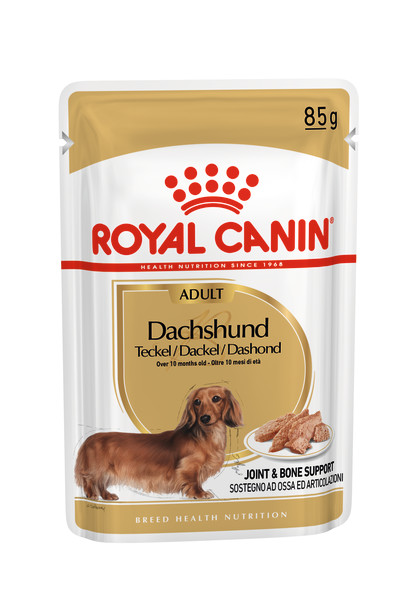 Dachshund Adult (in loaf)