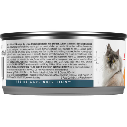 Royal Canin Feline Care Nutrition Intense Beauty Loaf In Sauce Canned Cat Food