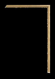 Enhancers Fillet Gold 1/4