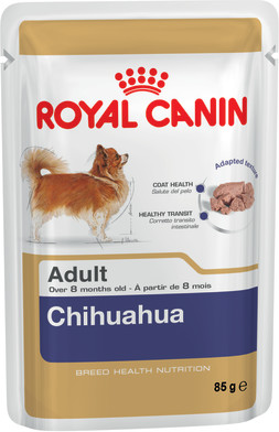 Chihuahua Adult (wet)