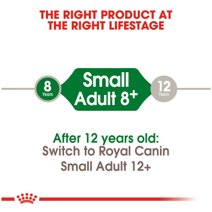 Royal Canin Size Health Nutrition Small Adult 8+ Dry Dog Food