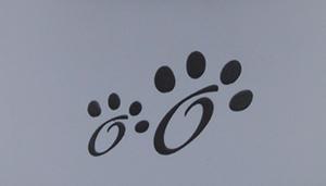 Maslow Design Series Non-Skid Dry Ears Dog Bowl