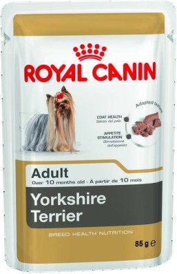 Yorkshire Terrier (wet)