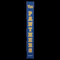Pittsburgh Panthers thumbnail 2