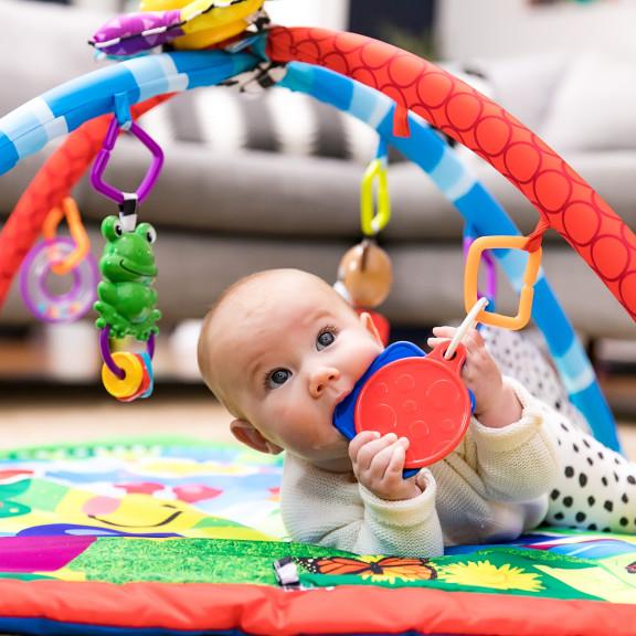 Caterpillar & Friends Play Gym™
