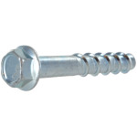 Bagged Screw-Bolt+ Anchors