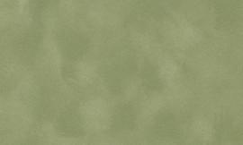 Crescent Asparagus 40x60