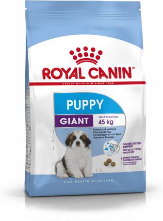 Giant Puppy