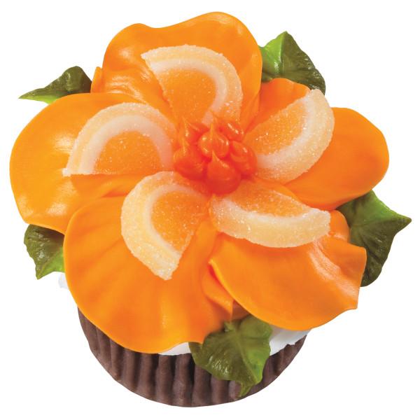 Orange Jelly Fruit Slices