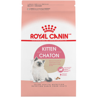 Kitten Dry Cat Food
