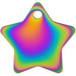 Rainbow Large Star Quick-Tag