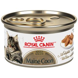 MAINE COON Adulte – nourriture en conserve pour chats