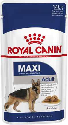 Maxi Adult (in gravy)