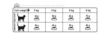 Oral Care feeding guide