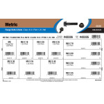 Class 10.9 Metric Flange Bolts & Nuts Assortment (M8-1.25 Thread)