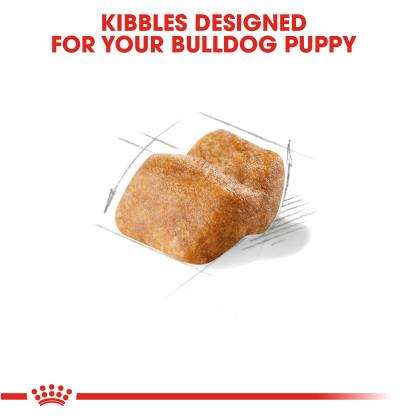 Royal Canin Breed Health Nutrition Bulldog Puppy Dry Dog Food