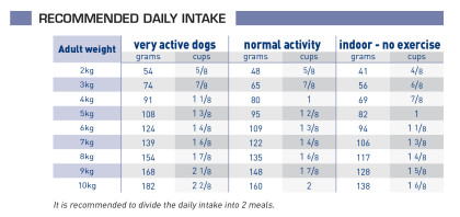 Adult small dog feeding guide