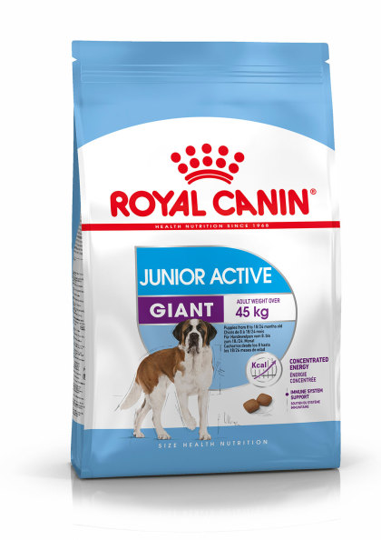 Giant Junior Active