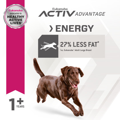 Fit Body Weight Control Large Breed Dry Dog Food