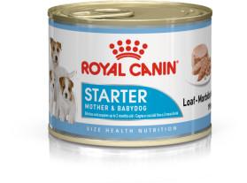 Starter Mother & Babydog