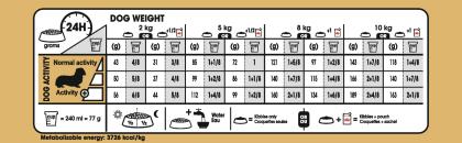 Dachshund Adult feeding guide