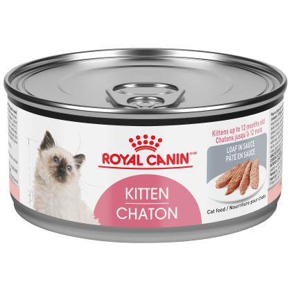 Royal Canin Feline Health Nutrition Kitten Loaf In Sauce Canned Cat Food