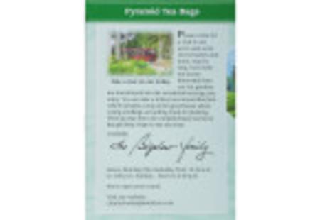 Charleston Tea Green Tea with Mint Box of tea