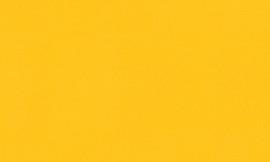 Crescent Golden 32x40