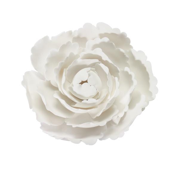 "White Peony 4"" Gum Paste Flowers"