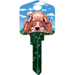 Paws & Claws - Lazy Day Dog & Cat Key Blank
